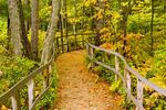 Trail in Autumn, Rachel Carson National Wildlife Refuge, Wells, Maine