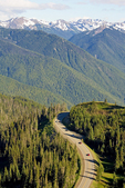 Park Road to Hurricane Ridge, Snow Covered Olympic Mountains, Olympic National Park, Washington