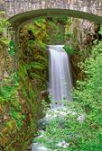 Christine Falls, Van Trump Creek, Mount Rainier National Park, Washington