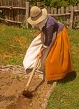 Pilgrim Woman raking at Plimoth Plantation, Plymouth, MA