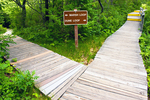 Trail Sign, Hellcat Swamp Trail, Parker River National Wildlife Refuge, Plum Island, Newburyport, Massachusetts