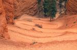 Navaho Trail Switchbacks, Bryce Canyon National Park, Utah