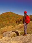 Hiker on Appalachian Trail viewing Pollock Knob, Timber Hollow Lookout, Blue Ridge Mountains, Shenandoah National Park, Virginia