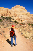 Hiker on Hickman Bridge Trail, Viewing Capitol Dome, Capitol Reef National Park, Utah