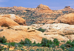 Petrified Sand Dunes, Arches National Park, Colorado Plateau, Moab, Utah