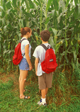 Children in Cornfield