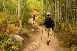 Hikers on Bradley Lake Trail, Grand Teton National Park, Wyoming