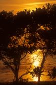 Sunset, Jamaica Bay Wildlife Refuge, Gateway National Recreation Area, Queens, New York
