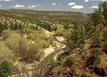 Gila Wilderness, Gila National Forest, New Mexico