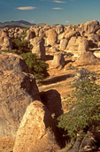 Erosional Volcanic Rock Formations, City of Rocks State Park, Faywood, New Mexico