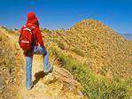 Hiker Viewing Wasson Peak, Sonoran Desert, Saguaro National Park, Arizona