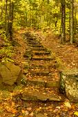 Bald Hill Trail in Autumn, Camden Hills State Park, Camden, Maine