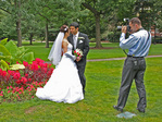 Photographer, Couple Getting Married, Boston Public Garden, Boston, Massachusetts