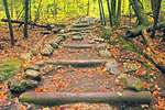 Wooden Steps, Welch Mountain Trail in Autumn, Waterville Valley, White Mountains, New Hampshire