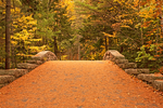 Bubble Pond Carriage Road Bridge in Autumn, Mount Desert Island, Acadia National Park, Maine