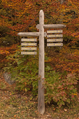 Carriage Road Directional Sign, Autumn Foliage, Acadia National Park, Maine
