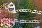 Somesville Historical Society Wooden Bridge, Autumn Foliage, Mount Desert Island, Somesville, Maine