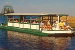 Airboat Ride, Myakka River State Park, Floridav