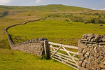 Stone Wall and rolling fields, Craig Cerrig Trail, Brecon Beacons National Park, Wales, United Kingdom