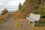 Wooden Bench on Coast Trail, West Quoddy State Park, Lubec, Maine