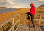 Hiker at North River Overlook, North River Wildlife Sanctuary, Mass Audubon, Marshfield, Massachusetts