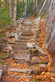 Rock Steps on Perpendicular Trail, Mansell Mountain, Acadia National Park, Mount Desert Island, Maine