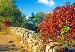 Stone Bridge in Autumn Foliage, Ipswich River Wildlife Sanctuary, Massachusetts Audubon Society, Topsfield, Massachusetts