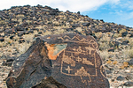 Petroglyphs, Ancestral Puebloan Rock Carving, Boca Negra Canyon, Petroglyph National Monument, Albuquerque, New Mexico