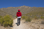 Hiker on McKittrick Canyon Trail, Guadalupe Mountains National Park, Texas
