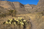 Dog Canyon Trail, Oliver Lee Memorial State Park, Alamorgordo, New Mexico