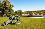 Boy on Fallen Redwood Tree, Simpson-Reed Grove, Jedediah Smith State park, Redwood National Park, California