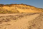 Sand Dunes and Beach, Duck Harbor Beach, Cape Cod, Wellfleet, Massachusetts