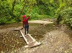 Tourboat, Lake Josephine, Mount Gould, Glacier National Park, Montana
