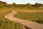 Wooden Boardwalk, Wellfleet Bay Wildlife Sanctuary, Cape Cod, Massachusetts Audubon Society, Wellfleet, Massachusetts