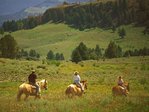 Horseback Riding, Yellowstone National Park, Wyoming