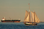 Liberty Clipper Tall Ship Sailboat and Tanker, Boston Harbor, Massachusetts