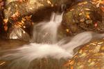 Cascades and Fallen Leaves, White Oak Canyon, Blue Ridge Mountains, Shenandoah National Park, Virginia