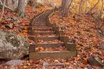 Humpback Rocks Trail, Blue Ridge Parkway, Blue Ridge Mountains, Appalachian Mountains, Virginia