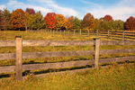 Wooden Fence and Field, Frontier Culture Museum, Farm Museum, Shenandoah Valley, Staunton, Virginia