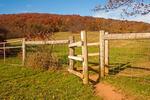 Wooden Fence, Calf Mountain Trail, Blue Ridge Mountains, Shenandoah National Park, Virginia