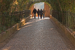 People Walking on Tree Lined Cobblestone Path, Generalife Palace, The Alhambra, Granada, Andalucia, Spain