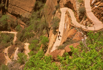 Hikers on Switchbacks of the Angels Landing Trail, Zion National Park, Utah