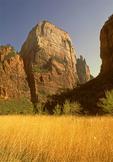 Great White Throne, Zion National Park, Utah