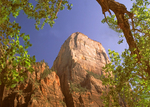 Great White Throne, Zion National Park, Utah