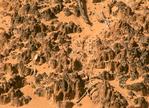 Cryptobiotic Soil, Cryptogamic Soil Crust