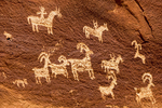 Ute Petroglyph at Wolfe Ranch, Arches National Park, Colorado Plateau, Moab, Utah