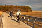 Biking on Nauset Bike Trail, Cape Cod, Massachusetts