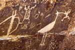 Stork Petroglyph, Ancestral Puebloan Petroglyphs, Puerco Ruins, Petrified Forest National Park, Holbrook, Arizona