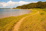 Trail along Shoreline, Felix Neck Wildlife Sanctuary, Martha's Vineyard, Edgartown, Massachusetts