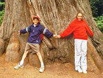 Kids and Redwood Trees, Simpson-Reed Grove, Jedediah Smith State park, Redwood National Park, California
